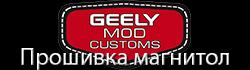 Geely Mod Customs